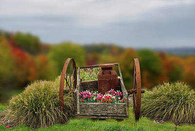 Photograph - Flower Wagon by Mary Timman