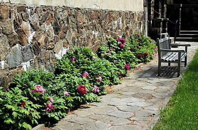 Photograph - Flower Walk by Deborah  Crew-Johnson