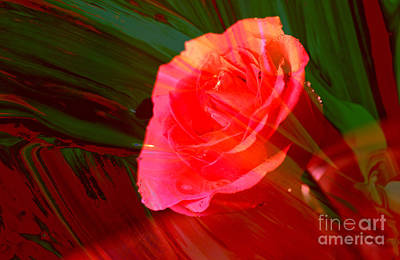 Photograph - Flowered Dreams by Jeff Swan
