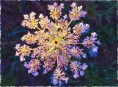 Photograph - Flowerflake by Jonathan Nguyen