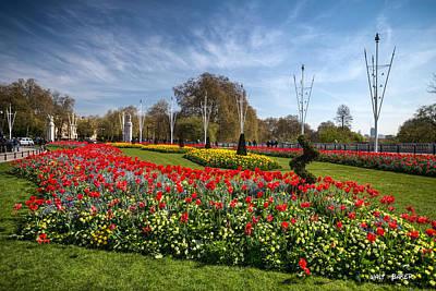 Photograph - Flowering Art by Walt  Baker