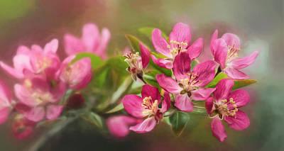Digital Art - Flowering Crabapple Blossoms by Lori Deiter