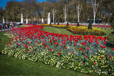 Photograph - The Gardens Of Buckingham Palace by Walt  Baker