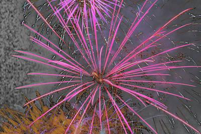 Pyrotechnics Digital Art - Flowering Fire by Marnie Patchett