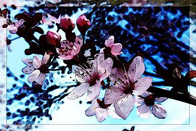 Photograph - Flowering Of The Plum Tree 7 by Jean Bernard Roussilhe