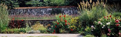 Flowering Plants In A Garden, Biltmore Art Print