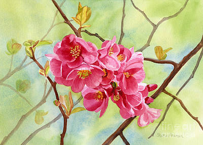 Quince Painting - Flowering Quince With Background by Sharon Freeman