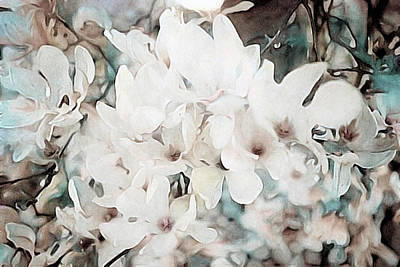 Mixed Media - Flowering Star Magnolia by Susan Maxwell Schmidt