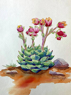 Painting - Flowering Succulent by Hilda Vandergriff