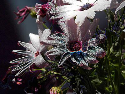 Flowers Art Print by Stuart Turnbull