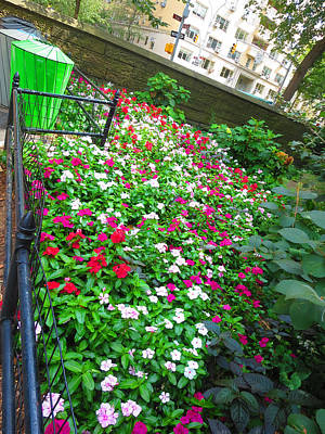 Photograph - Flowers Adorn By The Side Wall Of The Entrance At Central Park New York America Photography By Navin by Navin Joshi