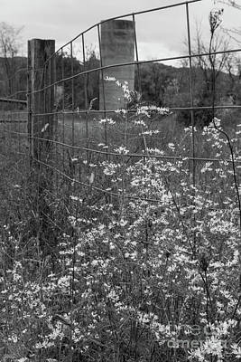 Photograph - Flowers And A Silo Grayscale by Jennifer White
