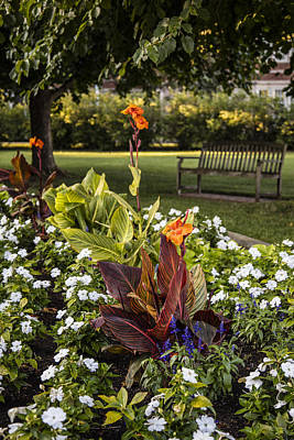 Flowers And Bench Msu Art Print by John McGraw