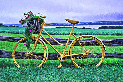 Flowers And Bicycle -  Digital Painting Art Print