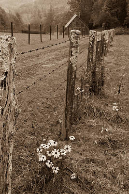 Photograph - Flowers And Fence by Joye Ardyn Durham