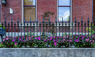 Photograph - Flowers And Fence Soulard Mo_dsc0214_16  by Greg Kluempers