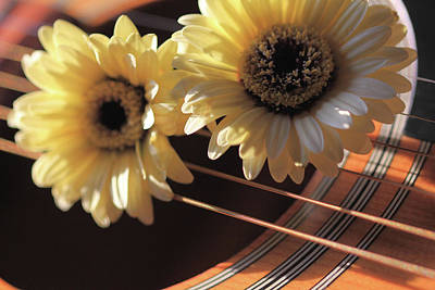 Photograph - Flowers And Guitar by Angela Murdock
