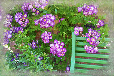 Photograph - Flowers And Park Bench by Judi Saunders