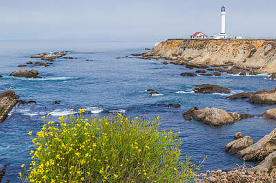 Flowers And Point Arena Lighthouse Print by Marc Crumpler