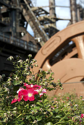 Photograph - Flowers And Steel by Michael Dorn
