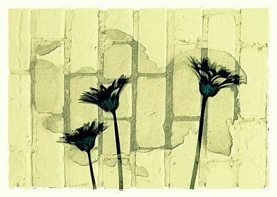 Flowers And The Brick Wall Art Print by Susan Stone