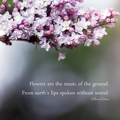 Flowers Are Music Art Print by Rebecca Cozart