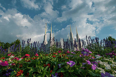 Photograph - Flowers At Church Of The Latter Day Saints by Brian Green