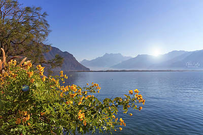 Photograph - Flowers At Geneva Lake, Montreux, Switzerland by Elenarts - Elena Duvernay photo