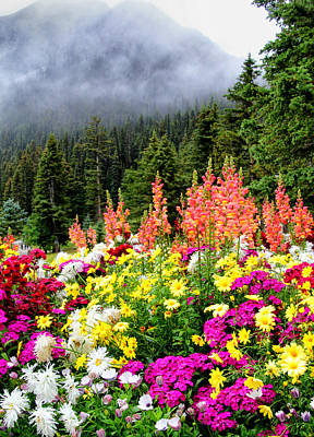 Photograph - Flowers At Lake Louise by Carolyn Derstine