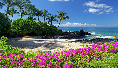 Photograph - Flowers At Makena Cove  by David Olsen