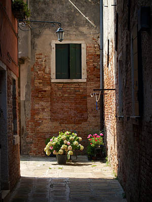 Photograph - Flowers At The End Of The Alley by David Beebe