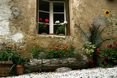 Photograph - Flowers At Window by Emanuel Tanjala