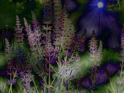 Flowers By Moonlight Art Print by Barbara S Nickerson