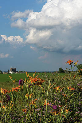 Photograph - Flowers, Clouds, And A Farm by Bill Jordan