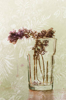 Floral Watercolor Photograph - Flowers Drying by Susan Capuano