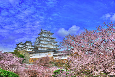 Historic Site Photograph - Flowers Era by Midori Chan