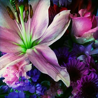 Photograph - Flowers Everyday 1 by Ellen Levinson