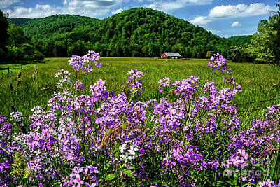 Photograph - Flowers Field And Barn by Thomas R Fletcher
