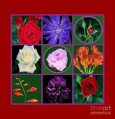 Photograph - Flowers Floral Customize Border Color Choose Paper Type N Frames Navinjoshi Fineartamerica Pixels  by Navin Joshi