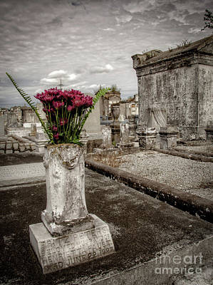 Photograph - Flowers For Fritz-nola by Kathleen K Parker