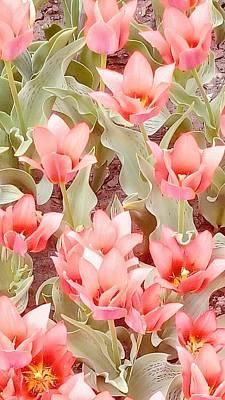 Photograph - Flowers Garmony by Oleg Zavarzin