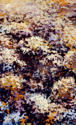 Graphics Painting - Flowers by Hans Neuhart