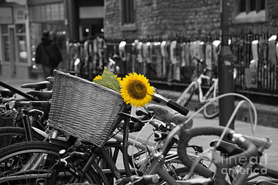 Photograph - Flowers In Bike by David Warrington