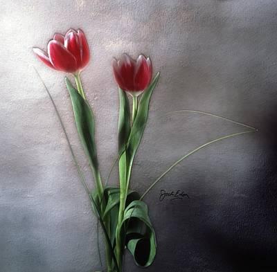 Flowers In Light Art Print by Jack Eadon