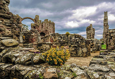 Photograph - Flowers In Ruins by Lexa Harpell