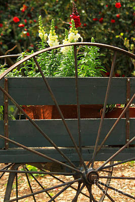 Kim Fearheiley Photography - Flowers In The Cart by James Eddy