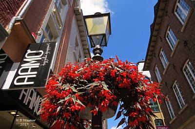 Blue Begonia Photograph - Flowers In The City by B Vesseur