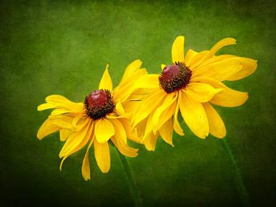 Photograph - Flowers In The Meadow by Carolyn Derstine