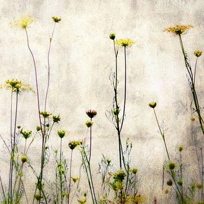 Mixed Media - Flowers In The Wind by Diane Paquin