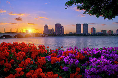 Photograph - Flowers Intertwined Under Downtown West Palm Beach Florida Sunset by Justin Kelefas